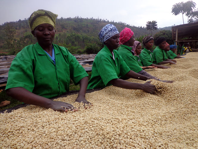 US main import from Rwanda is coffee