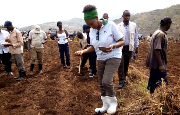 Rwandans begin Planting season