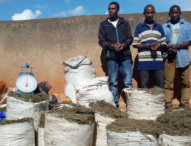 Rwanda Proposes 50-year ImprisonmentFor Narcotics, Human Trafficking Criminals