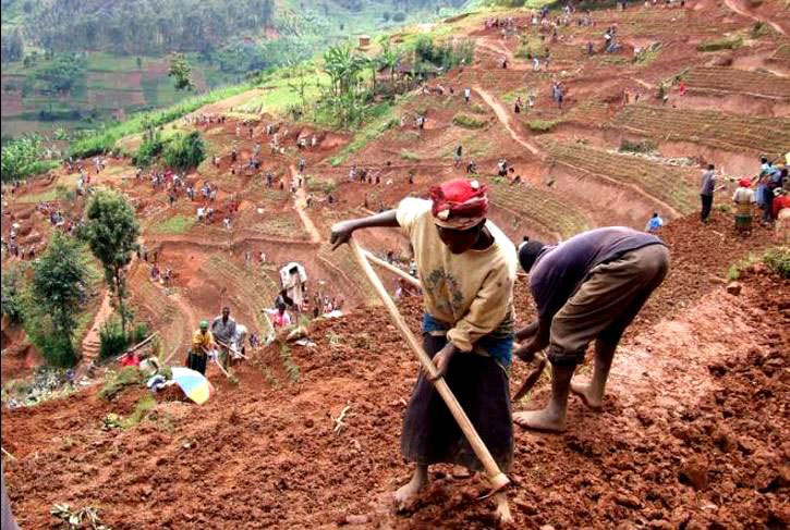 unemployment in rwanda Rwanda's economy has been growing steadily at about 8% since 2001 with gdp per capita more than tripling from us$ 211 in 2001 to us$ 718 in 2014 food crop production growth was more than twice that of population growth between 2007 and 2014.