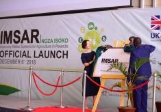 UK, Rwanda Launch £23.5M to Connect Farmers to Markets