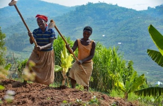Rwanda: The Way We Were Then and The Way We Are Now