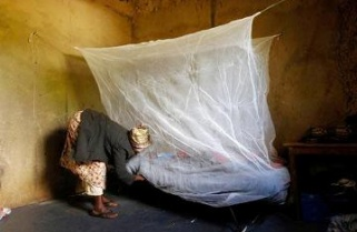 Rwanda Winning Fight Against Malaria