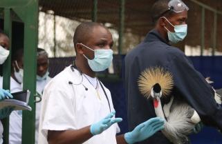 Rwandan Conservationist Scoops  €50,000 Award