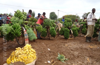German's Frw5b grant for Rwanda's rural development