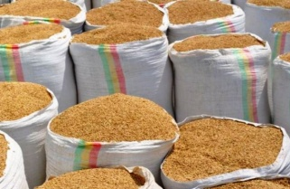 East Africans Now Desire for Rwandan Rice