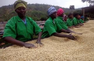 U.S Opens Gates For More Rwandan Exports