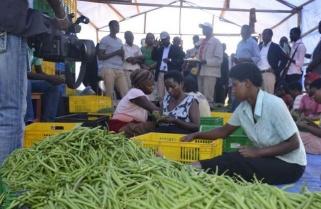 African Female Entrepreneurs Get $1 Billion Package