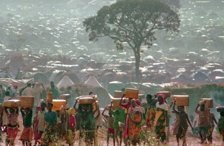 Genocide Beyond Borders: Hunted in Rwanda and Killed in Tanzania