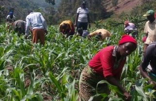 Meteo Rwanda Launches Forecast Information Survey