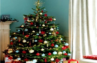 Christmas In Rwanda With No Christmas Tree