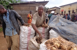 Significant Progress, Much Work Left to Do As Rwanda Marks World Food Day