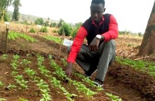 Rwanda's Chili Pepper on High Demand in Europe
