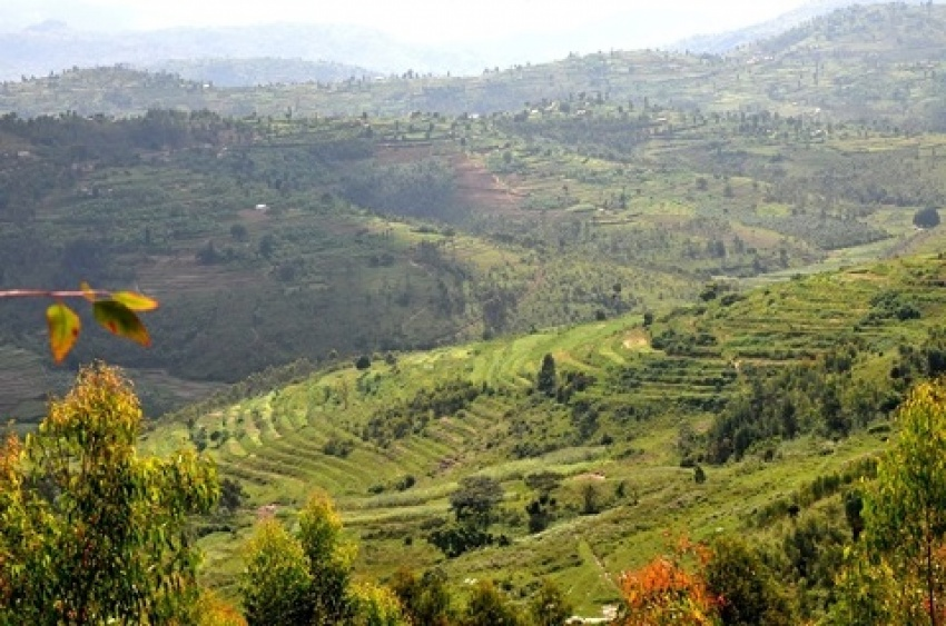 Terracing is nowadays a common land management practice in Nyamagabe. This has helped in controlling soil erosion and subsequently raised crop production.