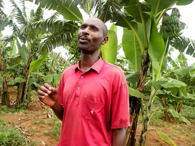 Emmanuel Gakwisi, an ex combatant from Bugesera, Eastern Rwanda used a few capital from government to invest in agri business