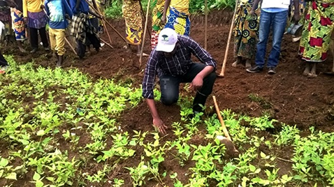 A public official planting a Tree in Nyamagabe district during Umuganda, a monthly community exercise