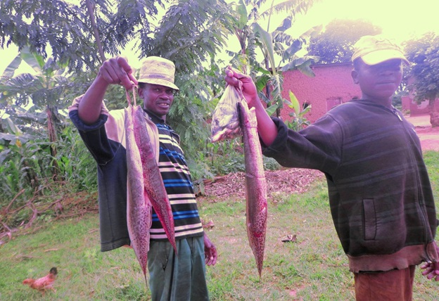Happy fishermen show their catch. Life is back on track in Bugesera