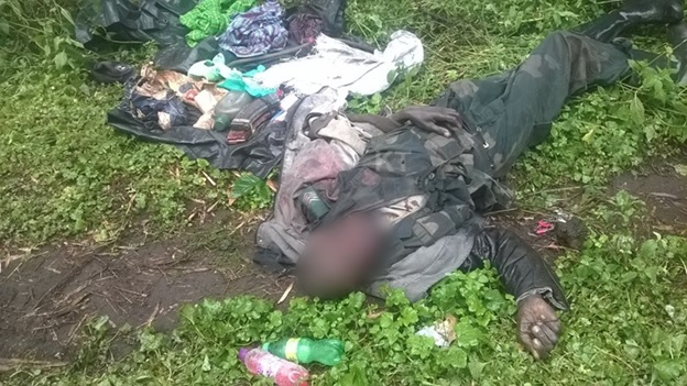 FDLR combatant killed in action
