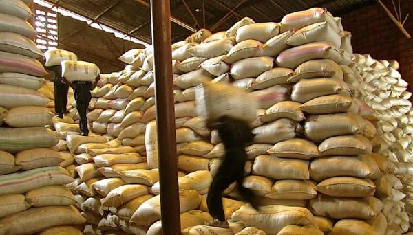 Men loading Coffee bags in store