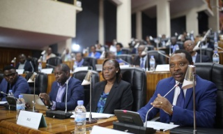 MPs Call for More Rehabilitation Funding