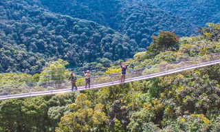 Nyungwe Canopy Ranked Best Canopy Walkway to Visit In 2021
