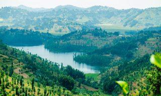 Rwanda Sets AmbitiousReforestation Targets