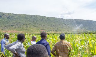 Land Use, Dvpt Master Plan Look to Improve Agricultural Yield Fifteen Fold by 2050