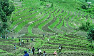 Rwanda: Community Benefit Company Act Takes Effect