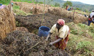 Climate Change: RCCDN Demonstrates How Rwanda Would Bridge Gaps in Agriculture