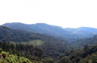 Rwanda Creates New Park, Targets $ 860M From Tourism