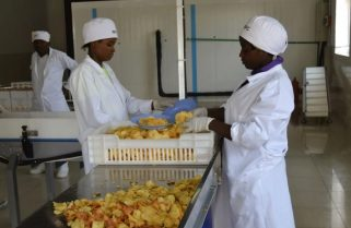 Trade Ministry, NIRDA On Spot over Failed Processing Centers