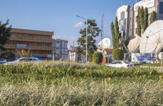 COVID-19: Rwanda to Conduct Mass Street Testing