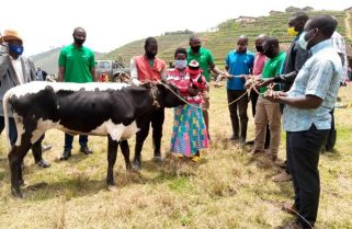 Man Awarded with A Cow for Saving Black-fronted Duiker