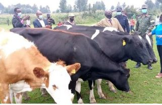 Kagame Supports A Citizen Who Lost Cows from Criminals' Attack