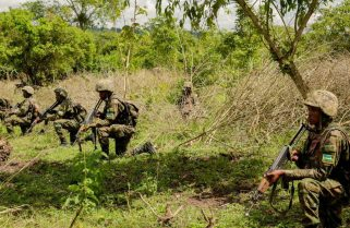 RDF Targets More Insurgents in Mozambique Assault