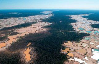 Establishment Of New International Crime Against Environment Moves A Step Closer