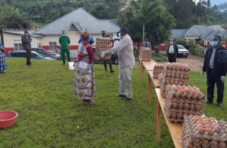 A Million Eggs to Ease Business Woes, Combat Malnutrition