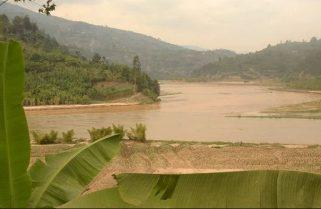 Mukungwa Marshland Farmers Lament Poor Harvests