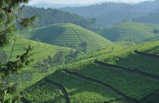 Rwanda Launches $30M Climate Change Plan to Target Rural Communities