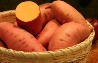Rwanda: New Sweet Potato Variety Introduced to Fight Stunting