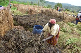 Climate Change: RCCDN Demonstrates How Rwanda Would Bridge Gaps in Agriculture