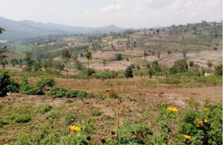 Government Moves to Temporarily Repossess Unregistered Land