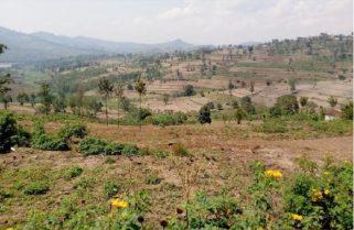 Senate Challenges RLMUA Decision to Repossess Enregistered Land
