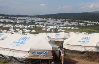 Why Is UNHCR Emblem Being Forged?