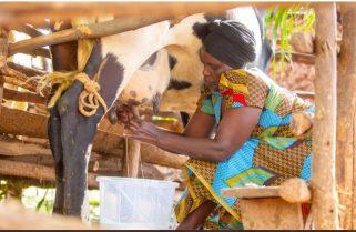 EU, Rwanda Sign Rwf 55 Bn Social Protection Grant
