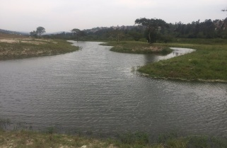 Rwf5.2Bn Nyandungu Eco Tourism Park for 2020