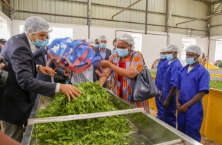 Indian Firm Opens Rwf4Bn Tea Factory in Rwanda