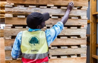 Rwanda to Launch an Open Competition for Wood Dealers