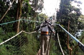 Rwanda National Parks Generate $16.8M