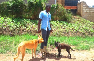 Meet Ngabo who Turns Stray Dogs into Friendly Animals
